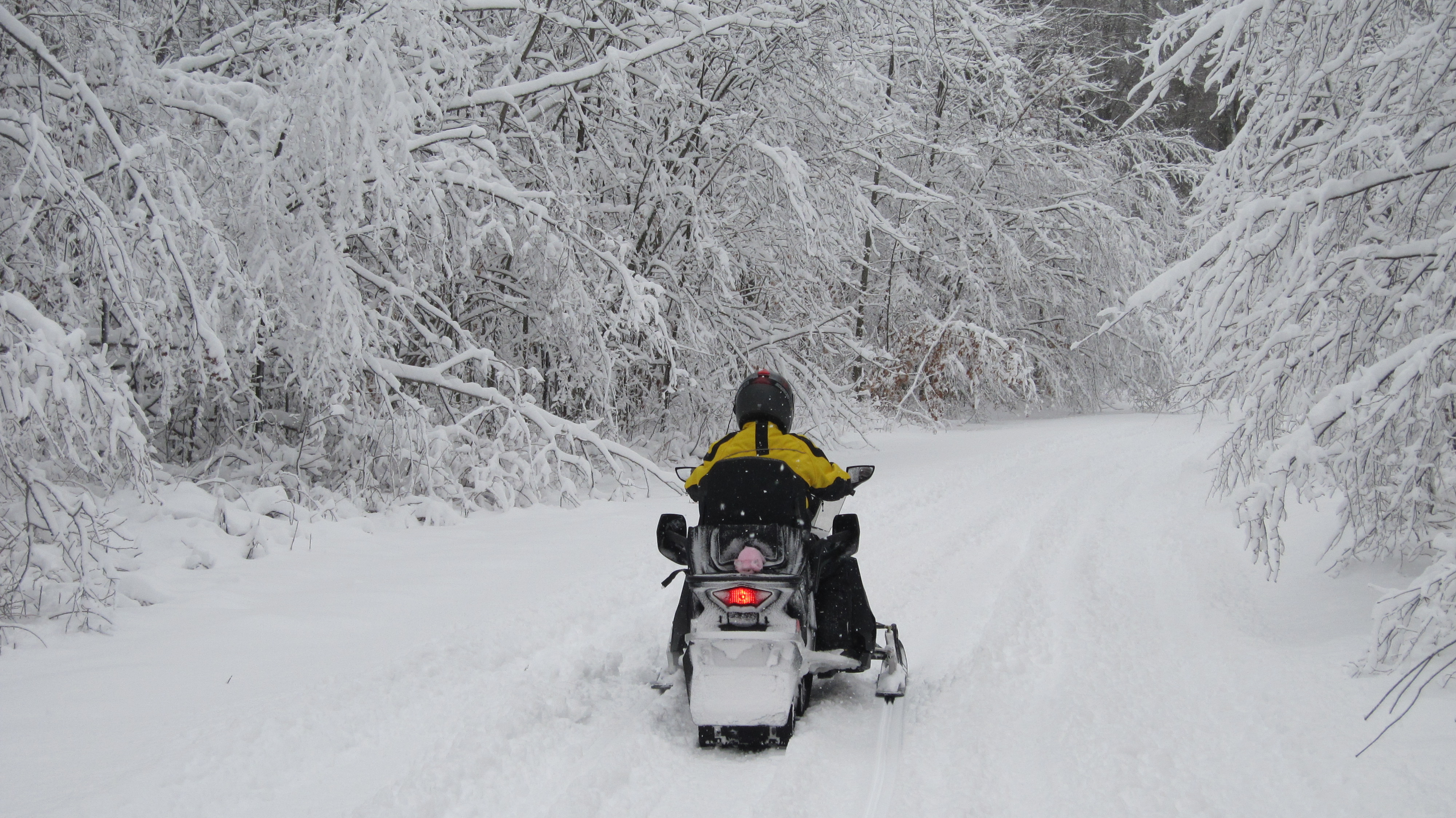 Snowmobiling in Cadillac Michigan